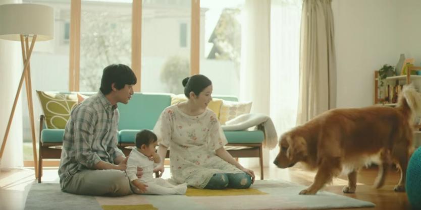 【犬の願いも即日配達】子供と触れ合いたいワンちゃんの感動CM 画像1