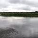 ここで泳げますか? とある川に水を撒いた結果、不気味なことが……