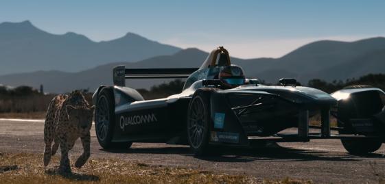 【マシンvs生物】レーシングカーが地上最速動物チーターに挑むドラッグレース…!!