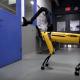 止まらない進化! 犬型ロボット「SpotMini」の助け合う姿が確認される!