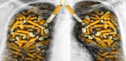 【タバコ】禁煙した瞬間から身体に起こる10の驚くべき変化!