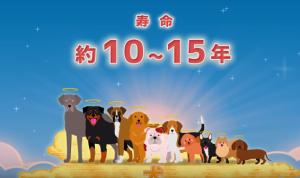 2018-10-31_103118