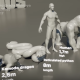【雑学】動物を小さい順から並べてみた! 世界最大の動物は……!?