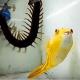 【衝撃映像】フグは与えられた餌(ムカデ、サソリetc)をなんでも食べてしまう!?
