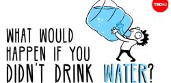 【雑学】水を飲まなかったらどうなるのか?