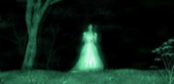 【かんのけ坂】深夜、田舎道で取り残された大学生が出会った手招きする女……その後、最悪な事態に……